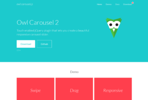 Vue Owl Carousel | Owl Carousel in Vue JS Fix 6